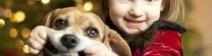 Причины завести пса