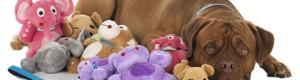 Идеи для собачьей радости: выбираем игрушки