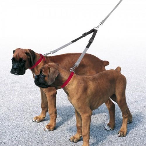 Спарка для собаки