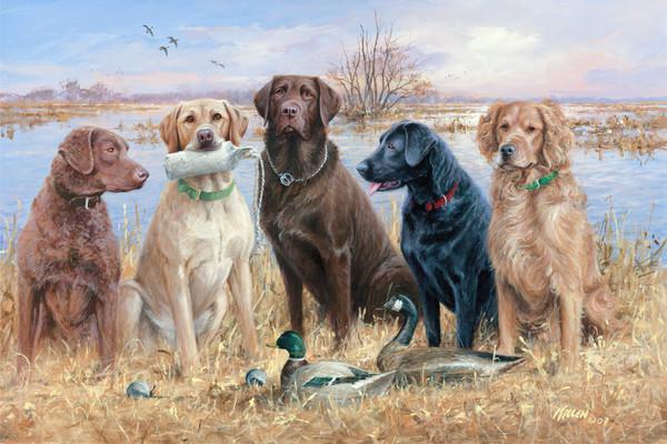 Содержание охотничьих собак
