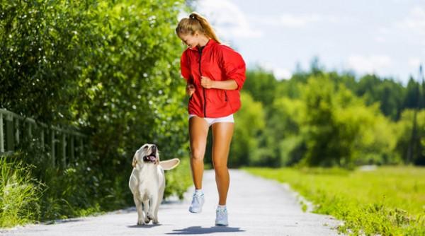 Бег с собакой