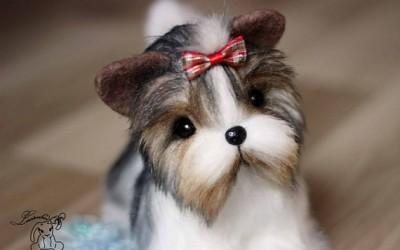 Бивер Йорк порода собак