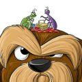 Клещи у собаки