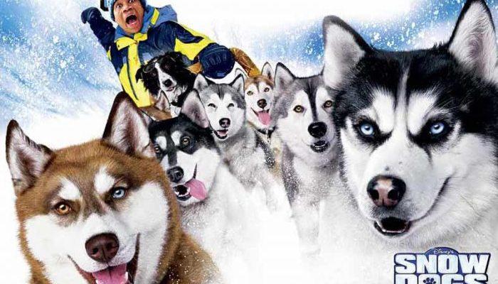 комедии про собак