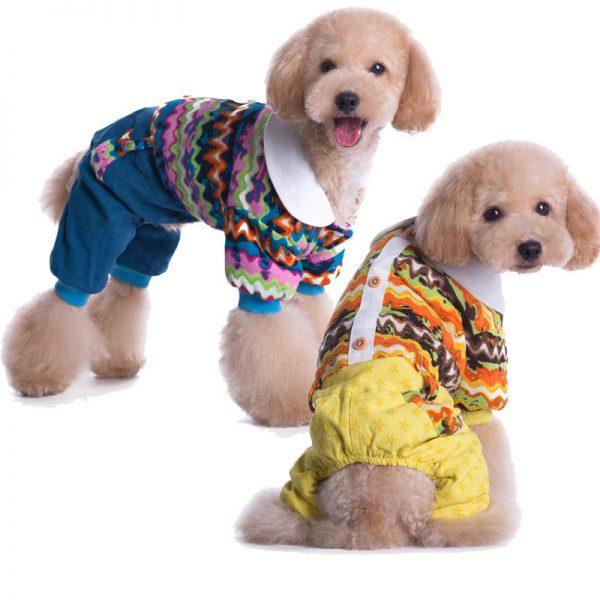 Выбираем зимнюю одежду для пса