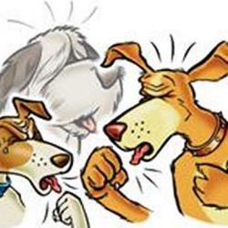 Причины и как лечить кашель у собаки