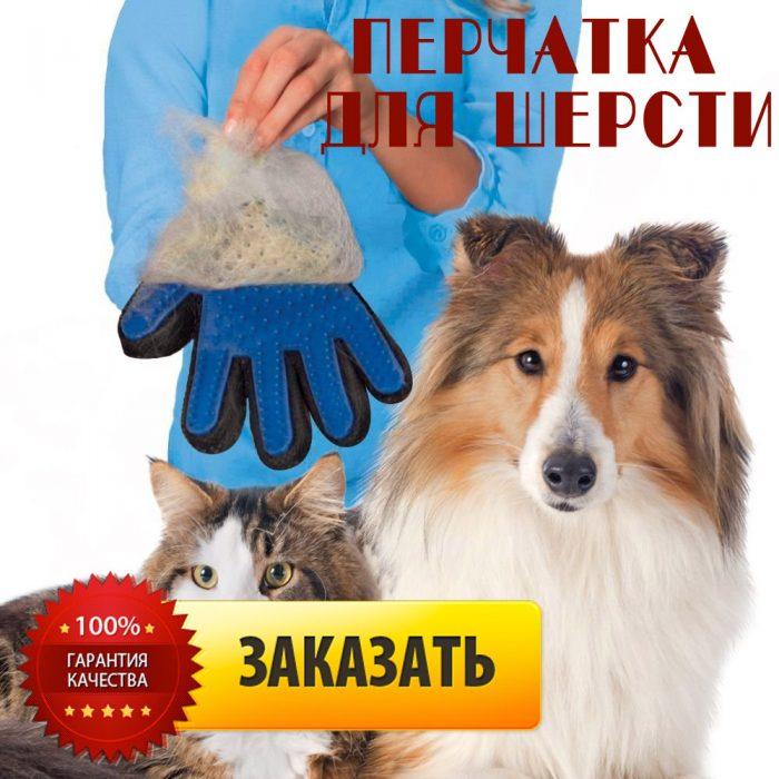 перчатка для шерстки